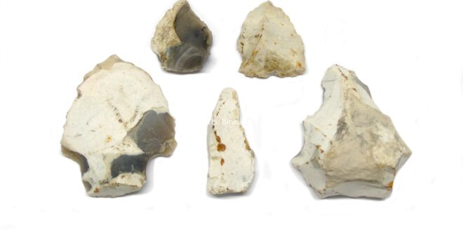 Neolithic Flint Artifacts
